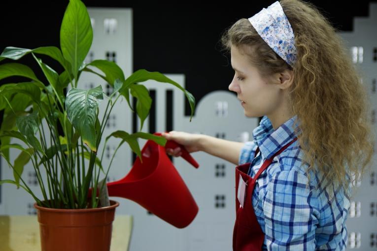 Женщина поливает цветок