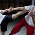 Боевые искусства, ММА - Martial Arts, MMA
