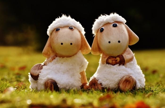 Igrushki ovechki Toys Lambs 5922  3880 700x458 Игрушки, овечки   Toys, Lambs