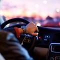 За рулем, салон автомобиля - Driving, car interior