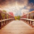 Деревянный мост, парк - Wooden bridge, park