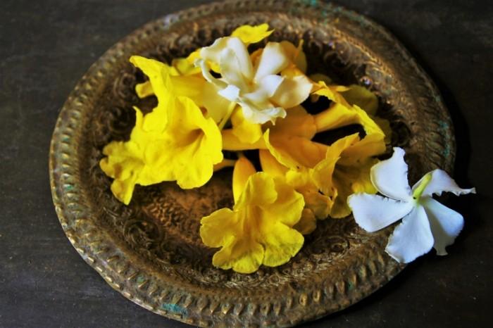 E`kzoticheskie tsvetyi buddizm Exotic flowers Buddhism 6000  4000 700x466 Экзотические цветы, буддизм   Exotic flowers, Buddhism