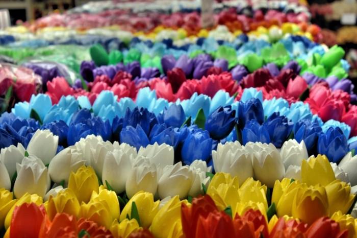 Amsterdam tsvetnyie tyulpanyi prazdnik tyulpanov Amsterdam colored tulips a holiday of tulips 5184  3456 700x466 Амстердам, цветные тюльпаны, праздник тюльпанов   Amsterdam, colored tulips, a holiday of tulips