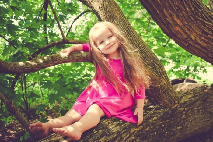 Devochka na dereve rebenok A girl on a tree a child 6000  4000 700x466 Девочка на дереве, ребенок   A girl on a tree, a child