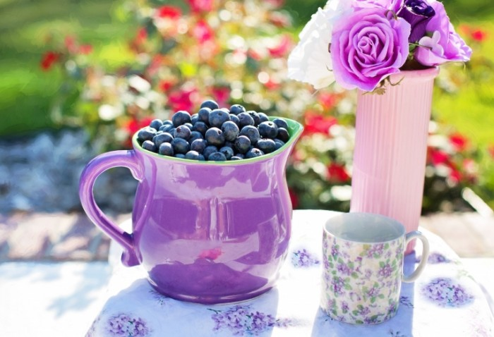 Kuvshin s chernikoy v letnem sadu Jug with blueberries in the summer garden 5115  3503 700x478 Кувшин с черникой в летнем саду   Jug with blueberries in the summer garden