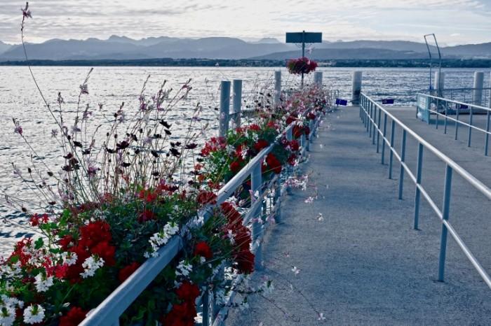 Pirs tsvetyi naberezhnaya ozero Pier flowers quay lake 5472  3648 700x466 Пирс, цветы, набережная, озеро   Pier, flowers, quay, lake