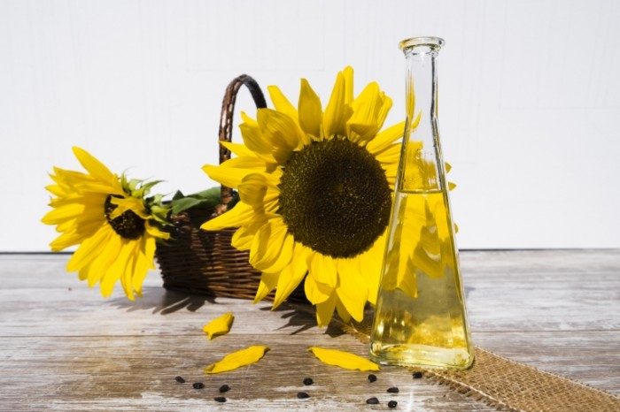 Podsolnuh maslo podsolnechnoe rastitelnoe maslo Sunflower oil sunflower oil 6000  4000 700x466 Подсолнух, масло, подсолнечное растительное масло   Sunflower, oil, sunflower oil