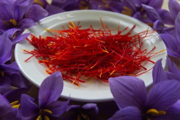 SHafran tsvetyi spetsii pryanosti Saffron flowers spices spices 6024  4024 700x467 Шафран, цветы, специи, пряности   Saffron, flowers, spices, spices