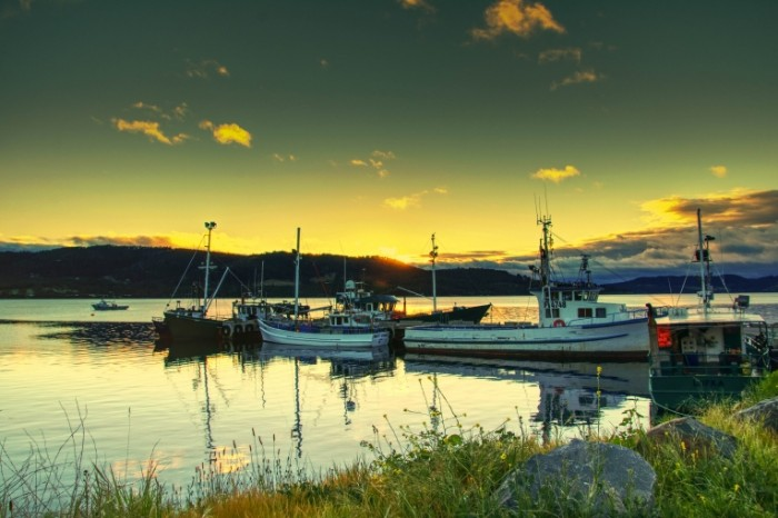 Tasmanskiy ostrov Avstraliya peyzazh Tasmanian Island Australia landscape 6013  4016 700x466 Тасманский остров, Австралия, пейзаж   Tasmanian Island, Australia, landscape
