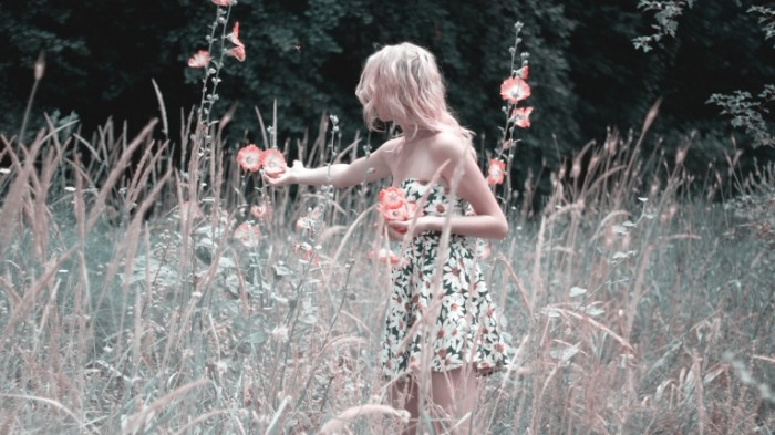 Devushka v pole sobiraet polevyie tsvetyi leto Girl in the field collects wildflowers summer 6144  3456 700x393 Девушка в поле, собирает полевые цветы, лето   Girl in the field, collects wildflowers, summer