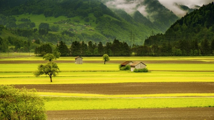 Lug u podnozhya trava domiki Meadow at the foot grass houses 5070  2852 700x393 Луг у подножья, трава, домики   Meadow at the foot, grass, houses