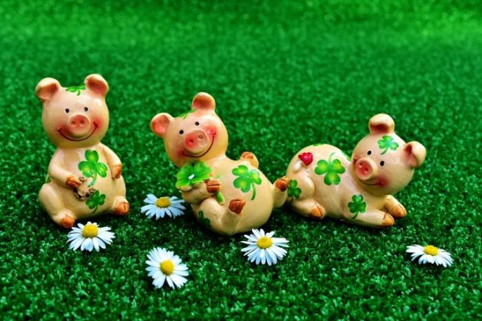 Glinyanyie figurki svinki romashki Clay figurines pigs chamomiles 6000  4000 700x466 Глиняные фигурки, свинки, ромашки   Clay figurines, pigs, chamomiles