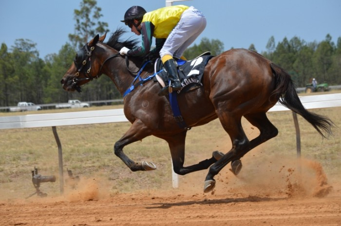 Konnyiy sport bega zhokey Equestrian sport jogging jockey 6016  4000 700x464 Конный спорт, бега, жокей   Equestrian sport, jogging, jockey