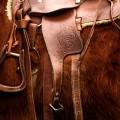 Конный спорт, седло, работа кожевника - Equestrian sport, saddle, tanner's work