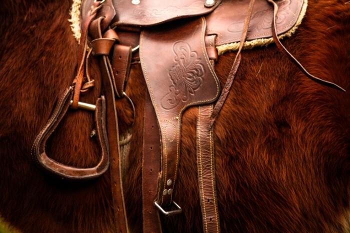 Konnyiy sport sedlo rabota kozhevnika Equestrian sport saddle tanners work 5616  3744 700x466 Конный спорт, седло, работа кожевника   Equestrian sport, saddle, tanners work