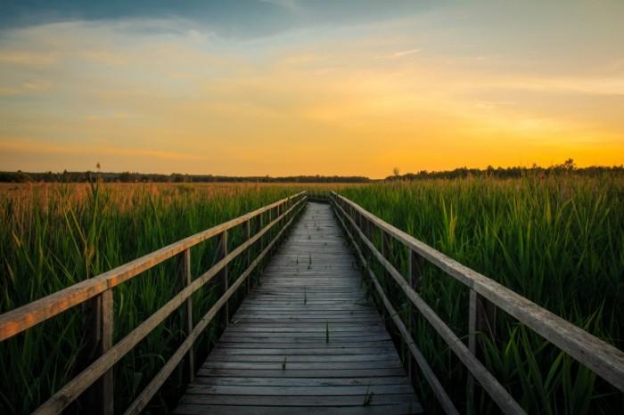 Zakat pirs trostnik pole Sunset pier cane field 5184  3456 700x466 Закат, пирс, тростник, поле   Sunset, pier, cane, field