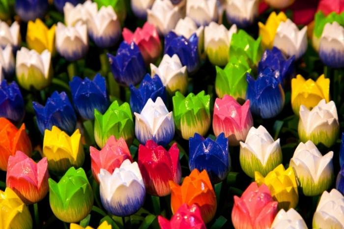 Dekorativnyie tsvetyi tyulpanyi landshaftnyiy dizayn Decorative flowers tulips landscape design 5616  3744 700x466 Декоративные цветы, тюльпаны, ландшафтный дизайн   Decorative flowers, tulips, landscape design