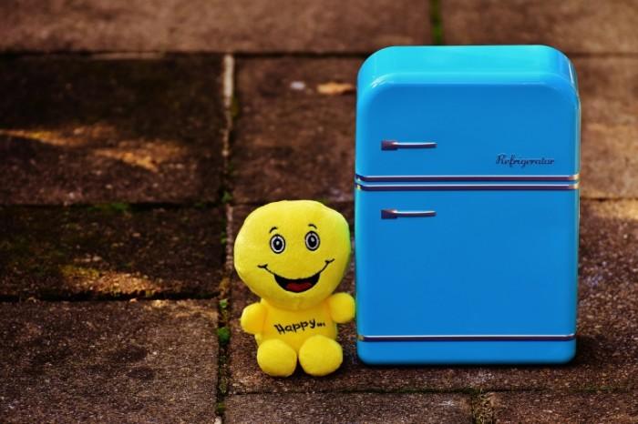 Holodilnik igrushka smaylik makro Refrigerator toy smiley macro 6000  4000 700x466 Холодильник, игрушка смайлик, макро   Refrigerator, toy smiley, macro