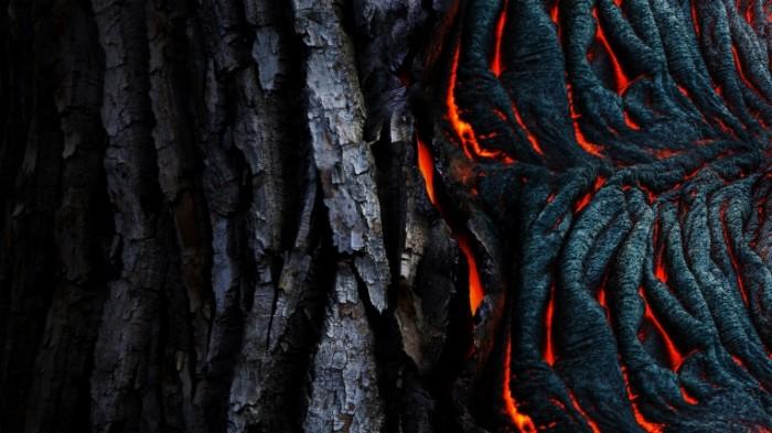 Лава, древесная кора, черный фон   Lava, bark, black background