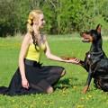 Девушка с ротвейлером, собака на прогулке - girl with a rottweiler, a dog on a walk