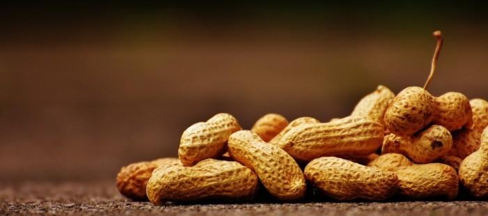 Orehi funduk mindal makro Nuts hazelnuts almonds macro 5991h2660 700x310 Орехи, фундук, миндаль, макро   Nuts, hazelnuts, almonds, macro