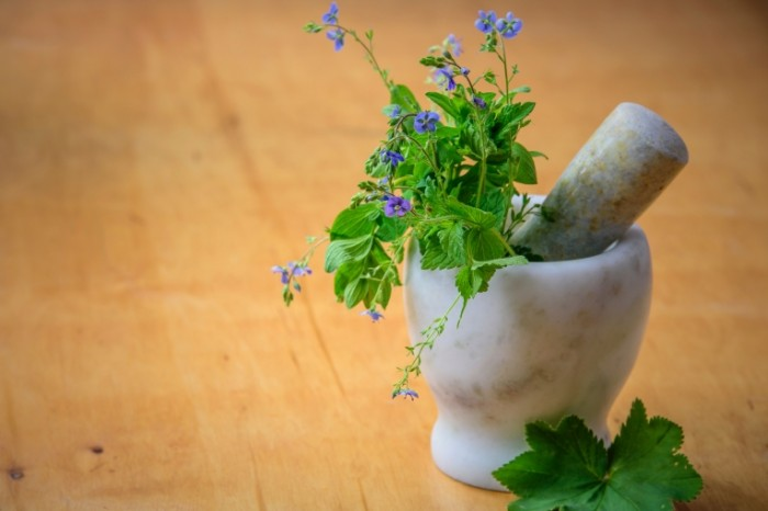 Travyi naturalnyiy chay prirodnyie lekarstva Herbs natural tea natural medicines 6016h4016 700x466 Травы, натуральный чай, природные лекарства   Herbs, natural tea, natural medicines