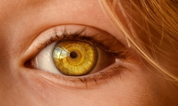 Глаз крупным планом, желтый, макро   Eye close up, yellow, macro