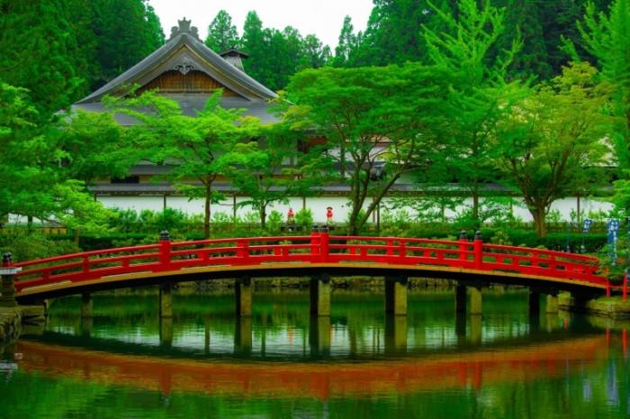 Красный мост в японском саду   Red Bridge in Japanese Garden