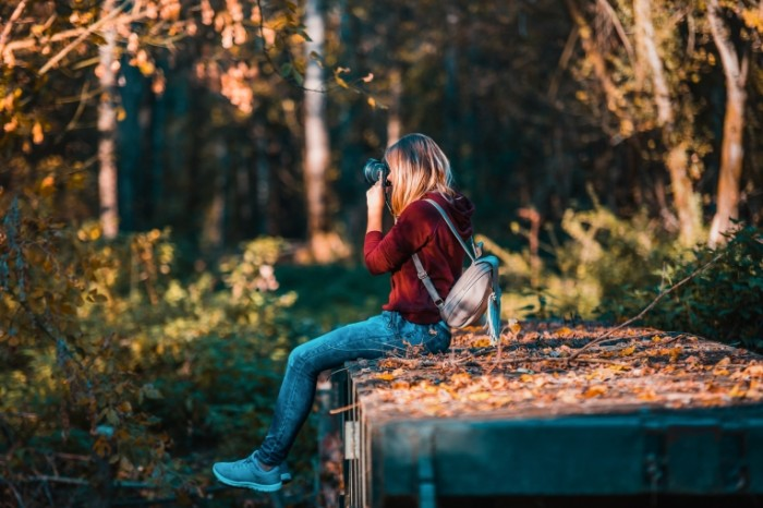 Osenniy les fotograf devushka s fotoapparatom Autumn forest photographer girl with a camera 6000h4000 700x466 Осенний лес, фотограф, девушка с фотоаппаратом   Autumn forest, photographer, girl with a camera