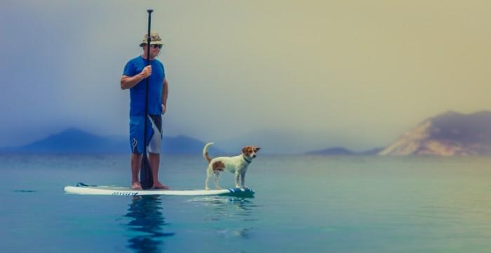 CHelovek na doske dlya serfinga s sobakoy i veslom Man on a surfboard with a dog and a paddle 6000  3094 700x360 Человек на доске для серфинга с собакой и веслом   Man on a surfboard with a dog and a paddle