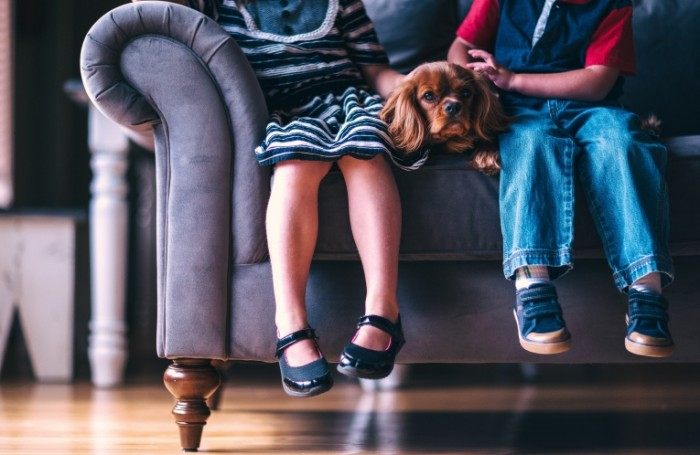 Deti s shhenkom sidyat na divane Children with a puppy are sitting on the couch 5129  3339 700x455 Дети с щенком сидят на диване   Children with a puppy are sitting on the couch