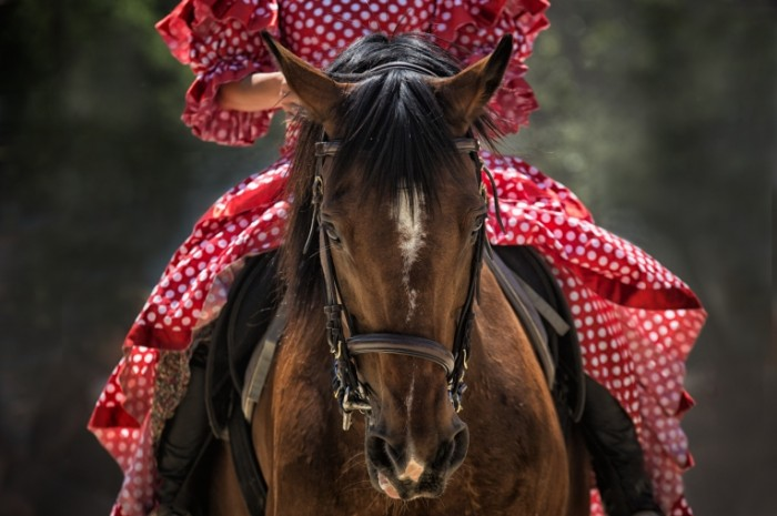 Devushka v krasnom plate na loshadi Girl in a red dress on a horse 5315  3543 700x465 Девушка в красном платье на лошади   Girl in a red dress on a horse