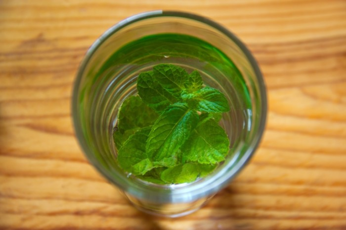 Listiki myatyi v stakane s vodoy Mint leaves in a glass of water 5184  3456 700x466 Японские цветы png, сакура пнг   Japanese flowers png, sakura png