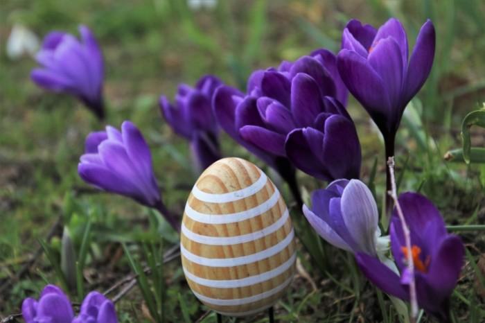 Podsnezhniki derevyannoe yaytso ukrashenie vesna Snowdrops wooden egg decoration spring 6000  4000 700x466 Подснежники, деревянное яйцо, украшение, весна   Snowdrops, wooden egg, decoration, spring